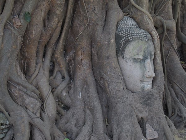 thai massage geschichte